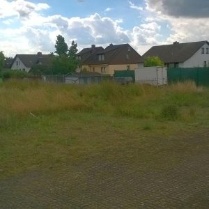 Das Bild zeigt den Parkplatz am Ende Homburger Straße. Die Abgrenzung von Parkplatz und anschließender Wiese ist schwer erkennbar, weil das Gras auf dem Parkplatz wuchert.durch den